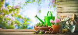 Gardening tools and spring flowers on the terrace - 192740930