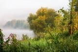 Green and golden landscape on river bank. - 192746951