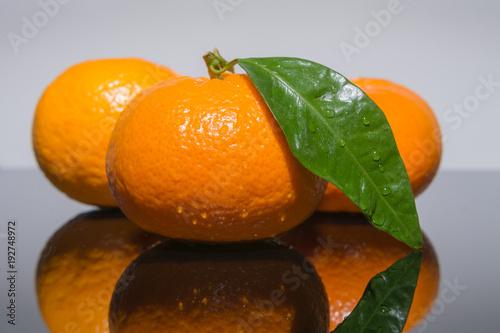 Manderinen - Frisches Obst mit Tropfen