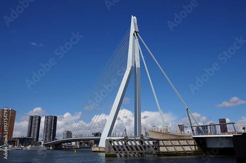 Aluminium Rotterdam Erasmusbrug Erasmus Bridge in Rotterdam
