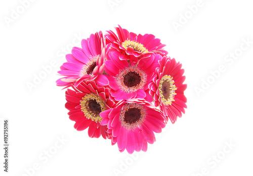 Plexiglas Gerbera ガーベラの花束
