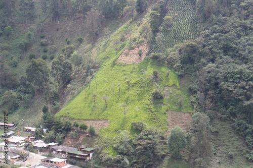 Fotobehang Pistache paisaje17