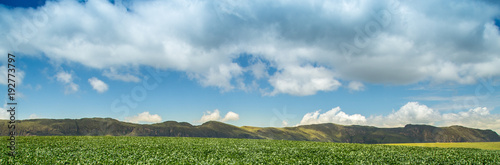 Foto op Canvas Blauw soybean plantation road montain brazil