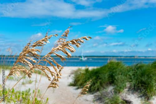 Fotobehang Blauw ocean scenes and landscapes