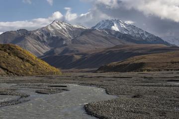Mt Pendleton & E Fk Toklat River;   Denali National Park;  Alaska