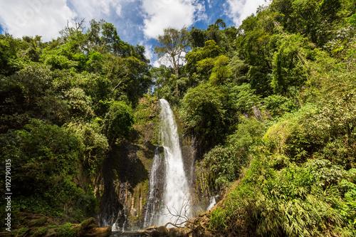 Waterfall in jungle - 192790135