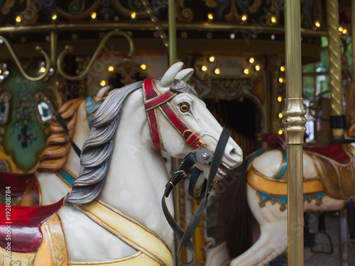 Fotobehang Amusementspark Classical carousel attraction with impressive hoses close-up