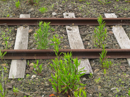 Fotobehang Spoorlijn 線路