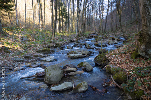 Fotobehang Bergrivier Spring streams of the mountain river, which is located in the forest area in the territory of western Ukraine