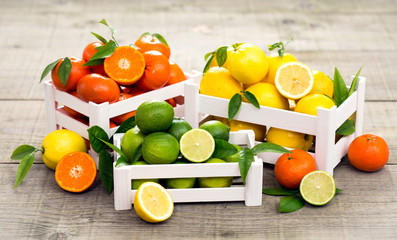 Fresh citrus fruits - lime, lemon and tangerine in the crate