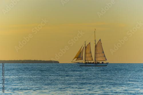 Aluminium Zeilen USA, Florida, Majestic sailing ship on the ocean at sunset time near key west