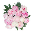 Quadro Fresh peony flowers