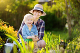 Beautiful woman and her cute son planting seedlings in bed in the domestic garden at summer day - 192908553