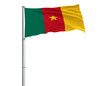 Постер, плакат: Flag of Cameroon on the flagpole fluttering in the wind on a white background 3d rendering