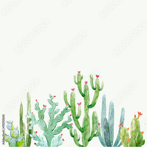 Watercolor cactus vector composition - 192928361
