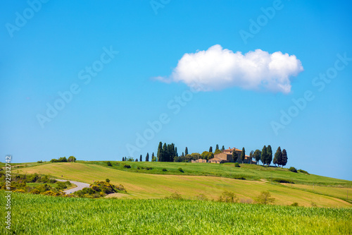 Papiers peints Toscane Beautiful nature of Italy. Tuscany landscape in spring