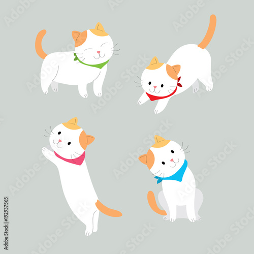 Cartoon cute actions orange and white cat vector. Grey background.