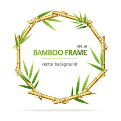 Realistic 3d Detailed Bamboo Shoots Circle Frame. Vector © mouse_md