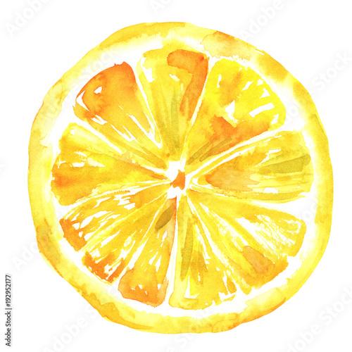 Leinwandbild Motiv Watercolour lemon drawing, isolated on white