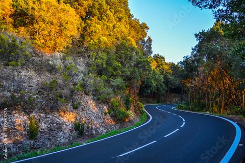 Fotobehang Canarische Eilanden Spain Gomera island road