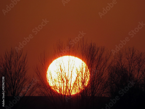 Foto op Canvas Rood paars Winter sunset Sun