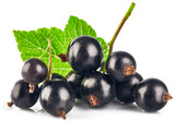 Berries black currant with green leaf. Fresh fruit, isolated