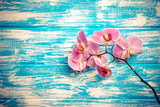 Branch of a purple orchid lies on a blue wooden background