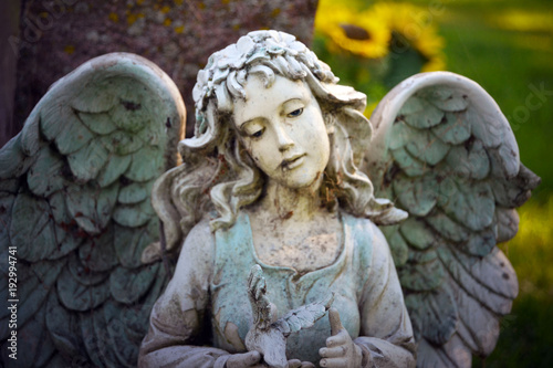 neglected-angel