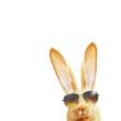 Leinwanddruck Bild - Frohe Ostern!
