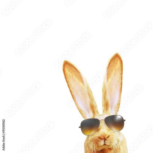 Leinwanddruck Bild Frohe Ostern!