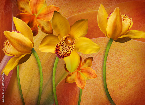 floral-background-of-orchids-bright-flowers-on-a-gray-applied-a-filter-with-grain