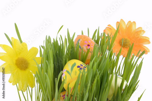 Papiers peints Herbe easter eggs and flowers on the grass on white background
