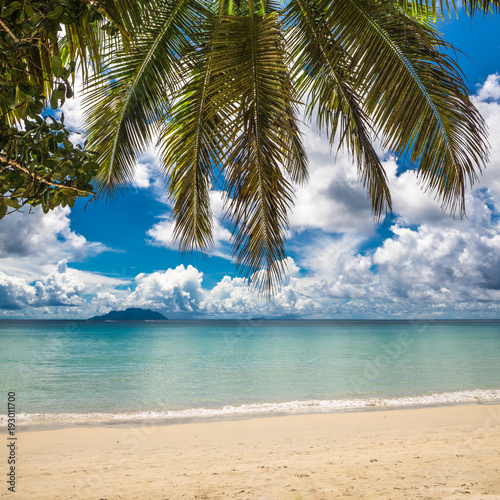 Deurstickers Tropical strand Tropical island beach. Perfect vacation background.