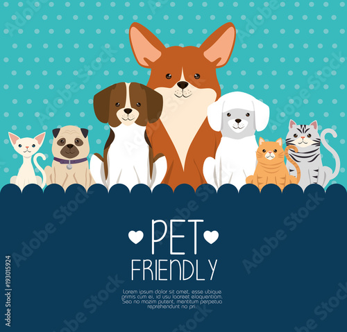 Naklejka dogs and cats pets friendly vector illustration design