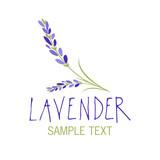 Lavender flower. Logo design. Text hand drawn. - 193018193