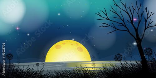 Papiers peints Bleu vert Night scene with moon and lake