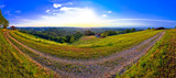 Green landscape of Medjimurje region panoramic view from hill - 193030314