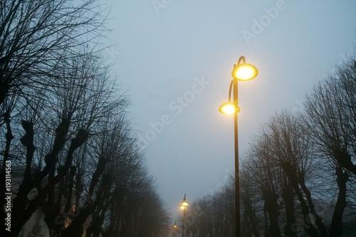 Street lights in foggy weather, late autumn, mistic haze or mist