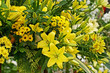 A still life floral arrangement using colourful flowers