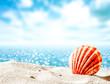 Sea and shell on sand