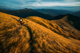 Beautiful Carpathian mountains in autumn time. Alone tourist on grass path. Travel concept background - 193166724