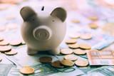 Piggy moneybox with euro cash and coins closeup. Financial concept - 193166910