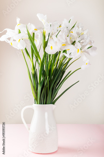 Aluminium Iris Beautiful White Iris Flowers in the Vase