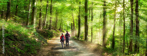 Tuinposter Weg in bos Aktivurlaub im Frühling bei einer Wanderung im Wald