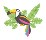 toucan exotic bird with leafs palm vector illustration design - 193211547