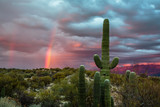 A Winter storm begins to clear at sunset and a rainbow arcs over the Sonoran Desert near Tucson, Arizona. © Dennis