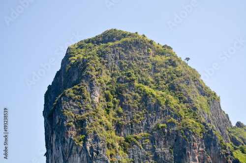 Fotobehang Thailand the top of the island of Phi Phi lay covered with greenery