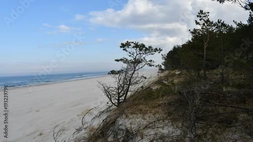 Deurstickers Grijze traf. Impressions from Debki, a Kashubian fishing village on the Polish Baltic Sea coast, Pomerania, Poland, Europe