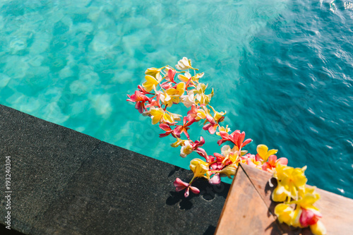 Tuinposter Bali Plumeria flowers (frangipani) floating in water pool. Indonesia, Bali.