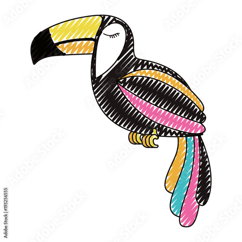 toucan exotic bird icon vector illustration design - 193256555